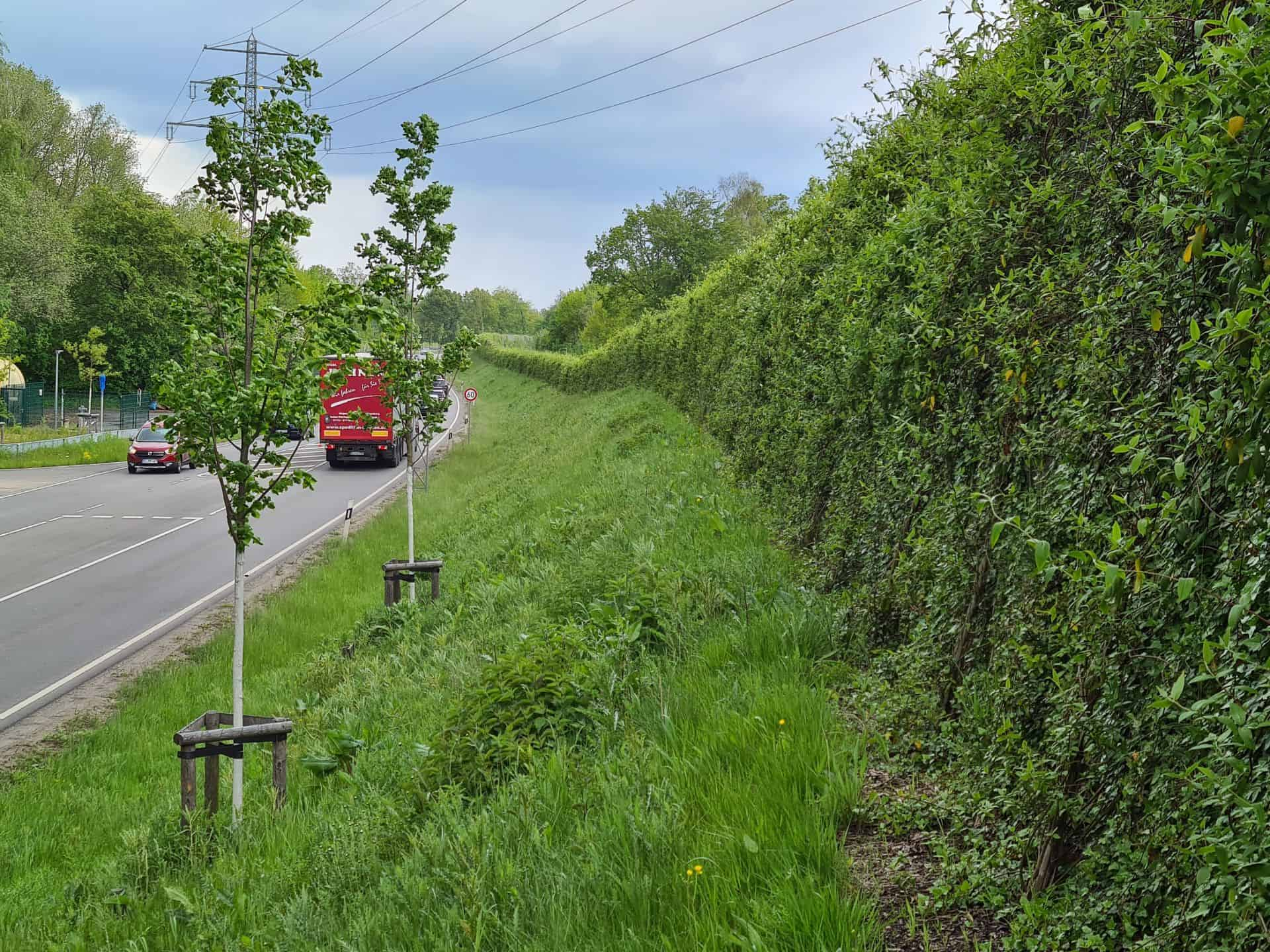üppig bepflanzte Lärmschutzwand in Pinneberg