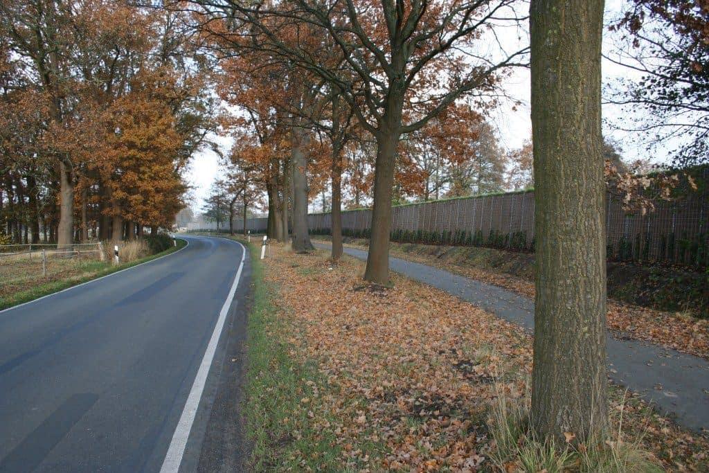 Ökologischer Lärmschutz für Städte und Kommunen - RAU